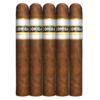 Cohiba Connecticut Robusto (5-Pack)